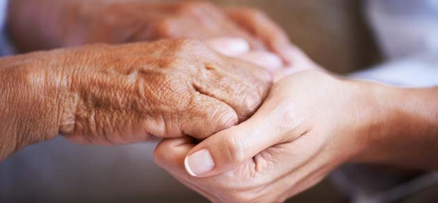 provider giving palliative care services